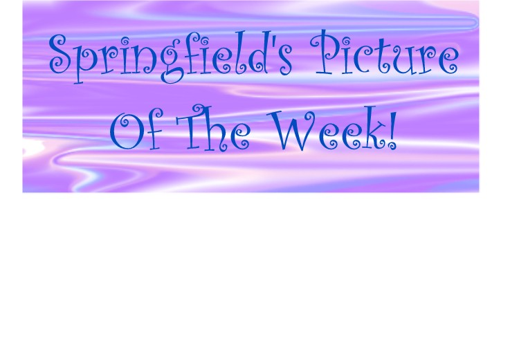 Springfield's Picture of the Week!